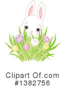 Rabbit Clipart #1382756