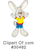 Rabbit Clipart #30482