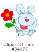 Rabbit Clipart #34077