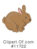 Royalty-Free (RF) Rabbits Clipart Illustration #11722