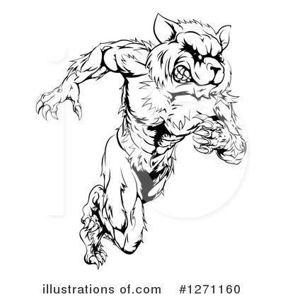 Raccoon Clipart 1271160