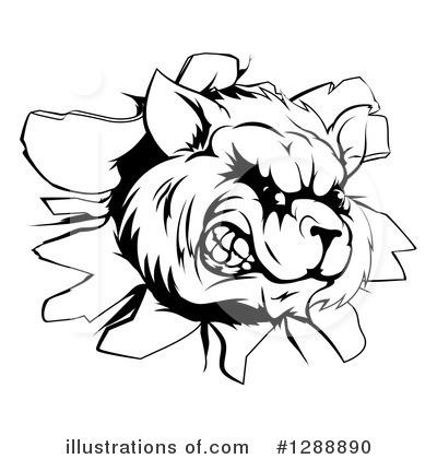 Raccoon Clipart 1261912