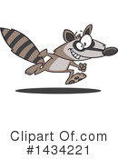 Raccoon Clipart #1434221 by toonaday