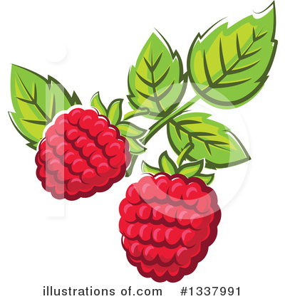 Berry Clipart #1337991 by Vector Tradition SM