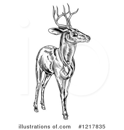 Stag Clipart #1217835 by AtStockIllustration