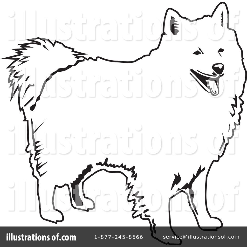 royalty-free-rf-american-eskimo -dog-clipart-illustration-by-david-rey-stock-sample-26514.jpg