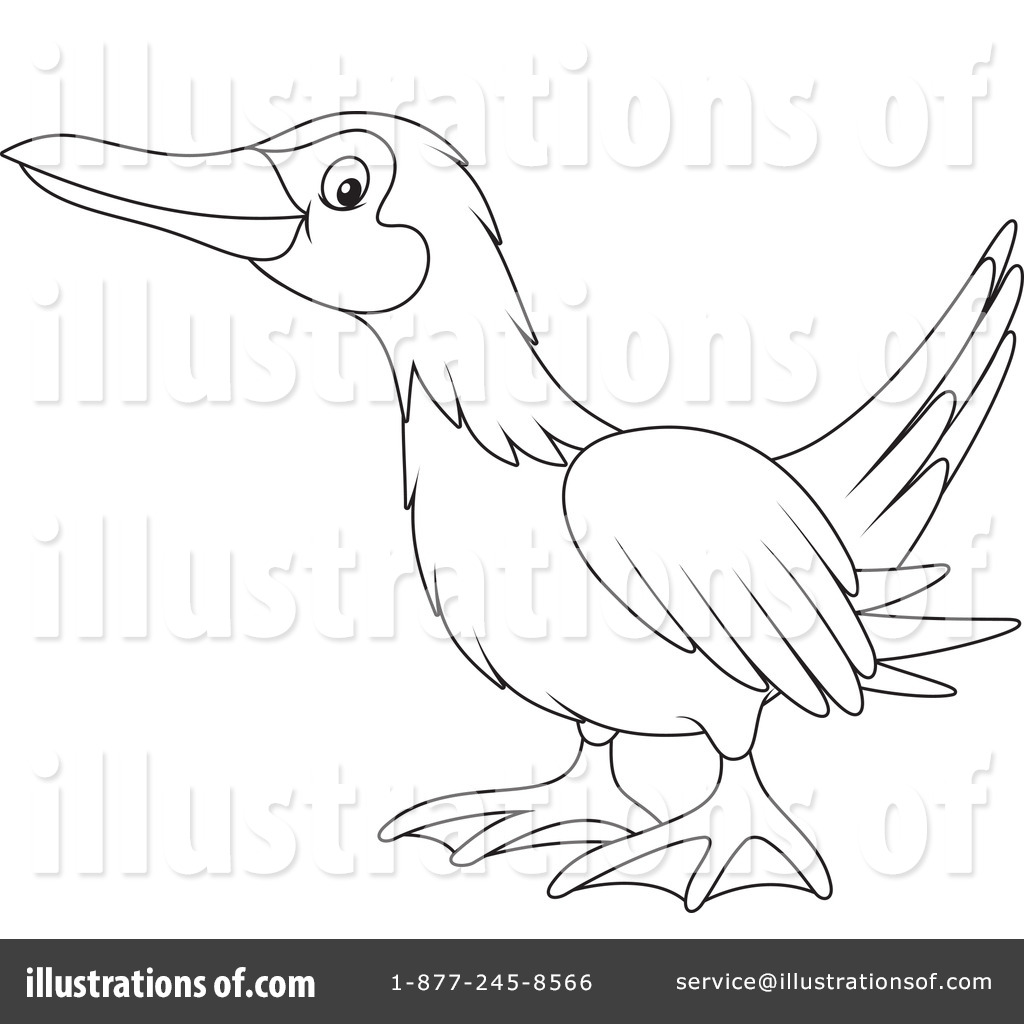 Blue Footed Booby Greeting Card For Sale By Larry Linton blue Footed Booby Coloring Page Blue Footed Booby Coloring Page Blue Footed Booby Blue Footed Booby Coloring Page also 3787 further Fairy Circle Coloring Page additionally Vibrant Free Printable Color Pages Red Fox Coloring Page in addition Kids Costume Minion Coloring Pages. on dirty coloring pages