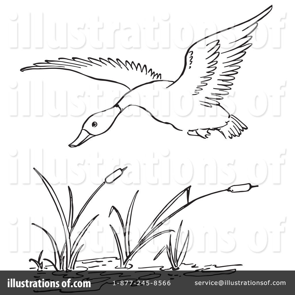 Free Coloring Pages Of Nature Camo
