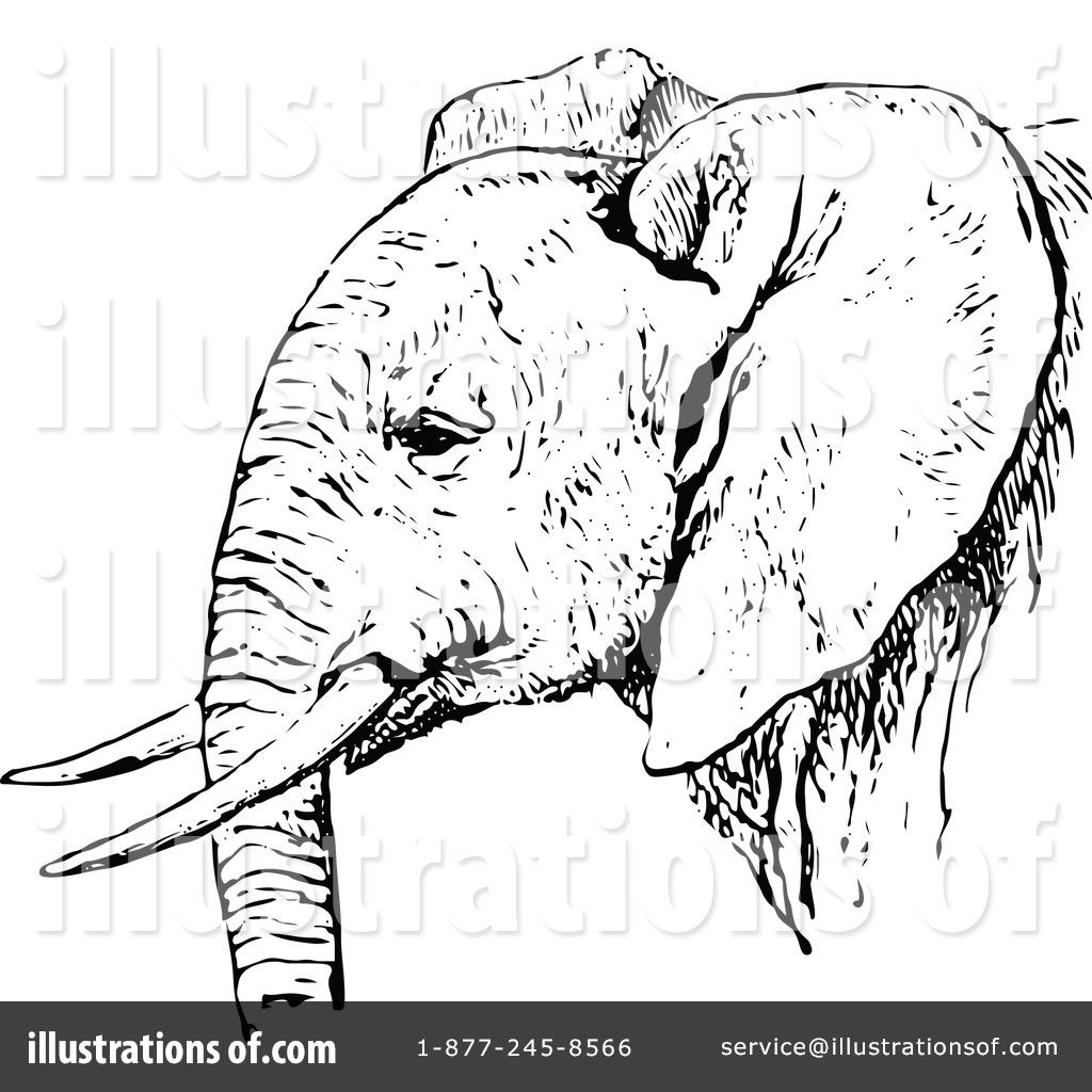 vintage elephant clip art - photo #17