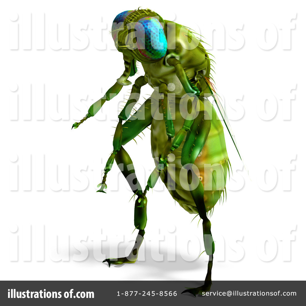 House Fly Clip Art (rf) house fly clipart