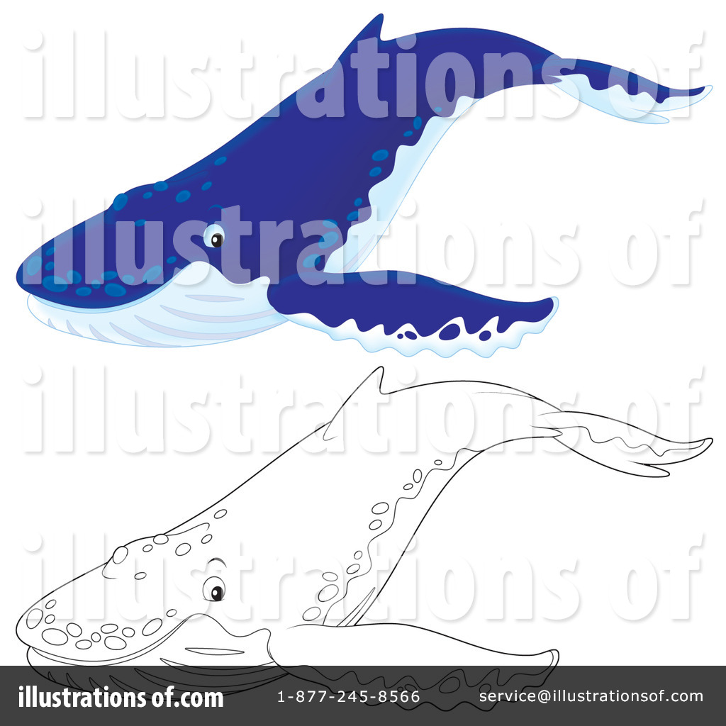 Cartoon Humpback Whale Humpback whale clipart