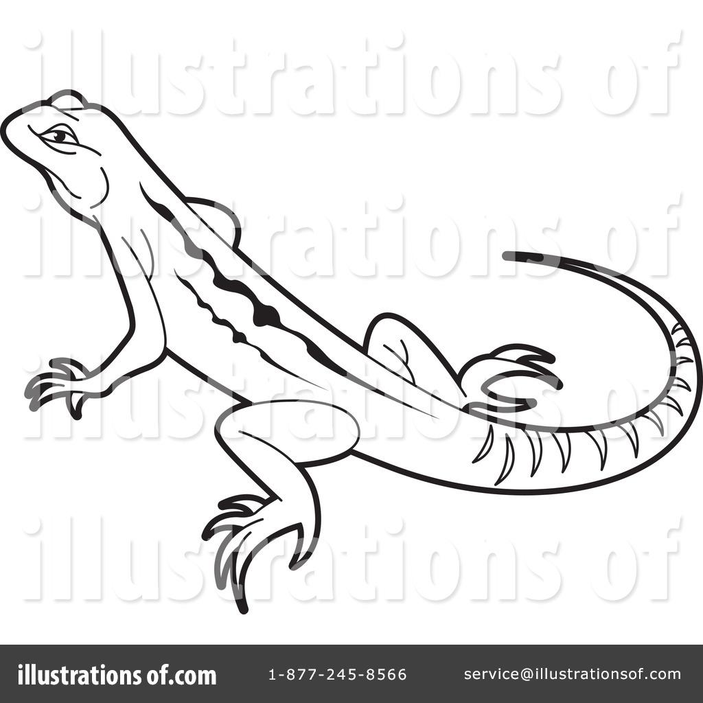 RF  Lizard Clipart  Lizard Clipart