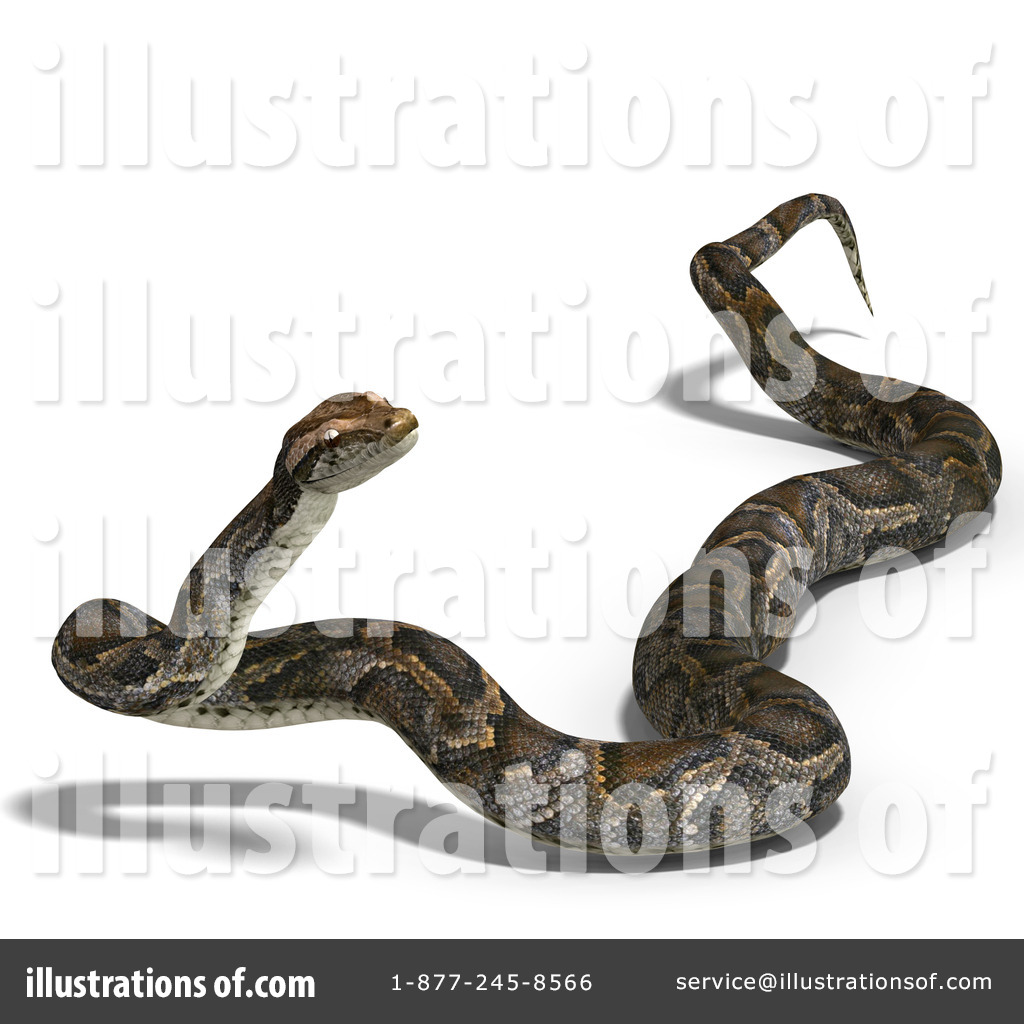 Python Clipart #1071491 - Illustration by Ralf61
