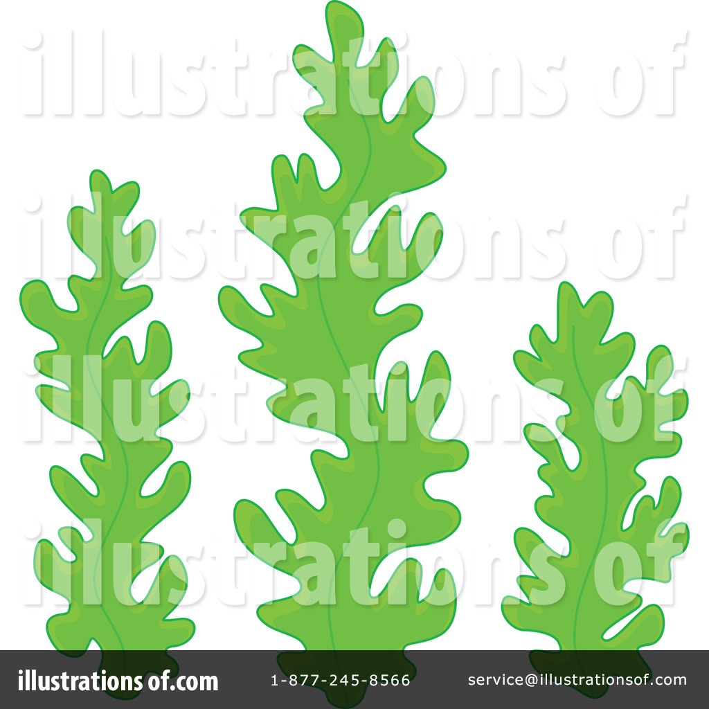Cartoon Seaweed Clipart  RF  Seaweed Clipart