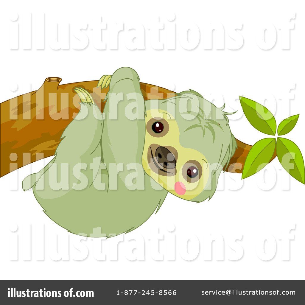Sloth Illustration Sloth clipart illustration