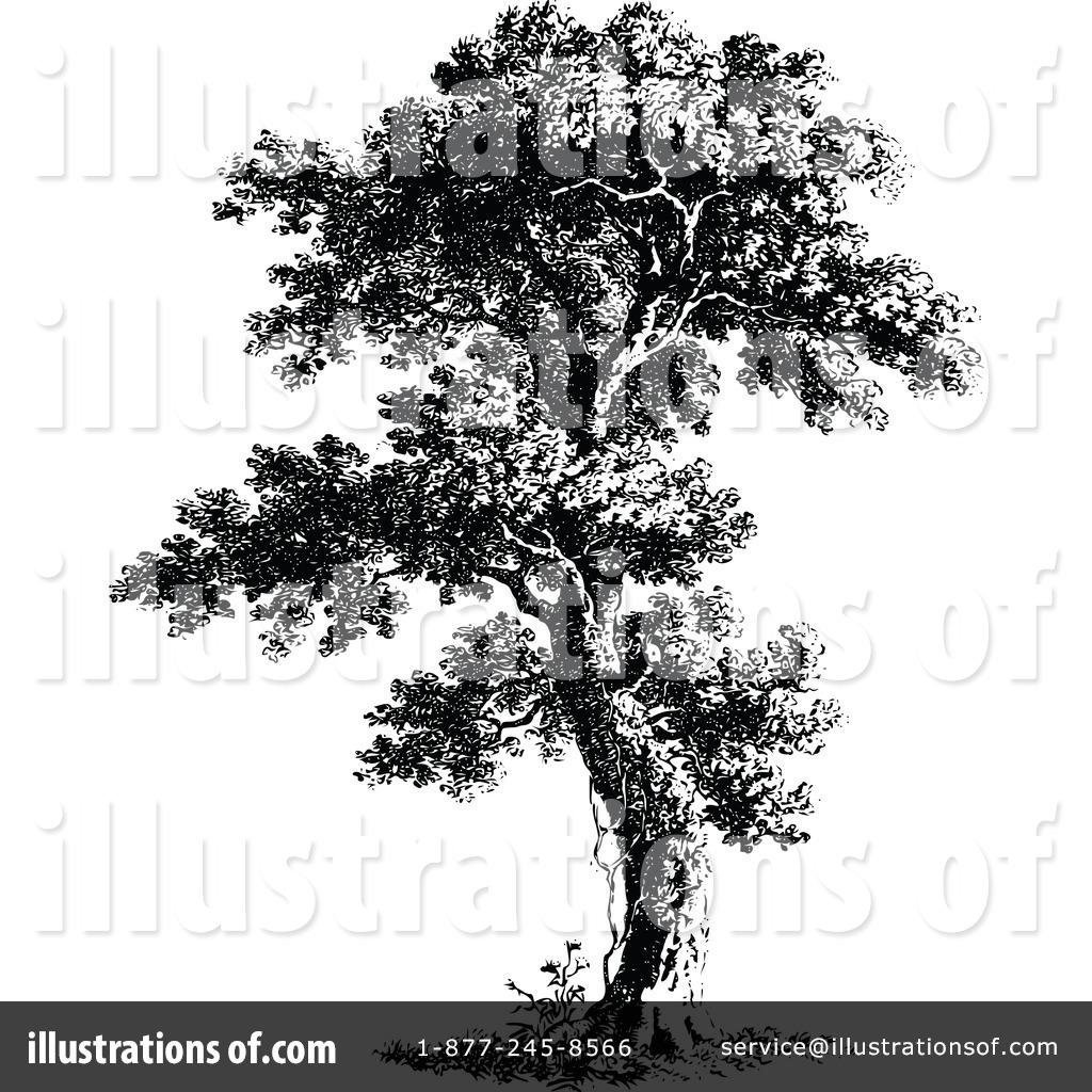 Tree Clipart 1116019 Illustration By Prawny Vintage