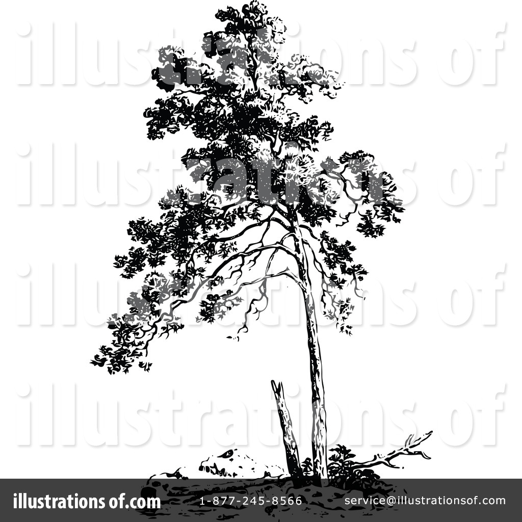 Tree clipart 1116022 illustration by prawny vintage royalty free rf tree clipart illustration by prawny vintage stock sample thecheapjerseys Gallery