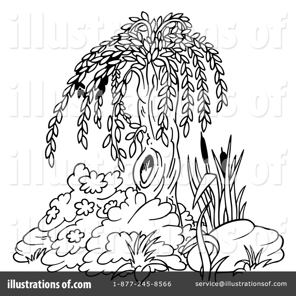 willow tree coloring pages - photo#26