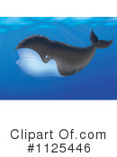 Right Whale Clipart #1125446