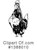 Royalty-Free (RF) Rooster Clipart Illustration #1388010