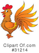 Rooster Clipart #31214