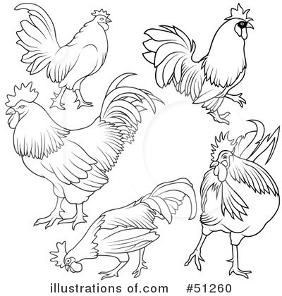 Rooster Clipart #51260 by dero