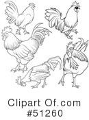 Royalty-Free (RF) Rooster Clipart Illustration #51260