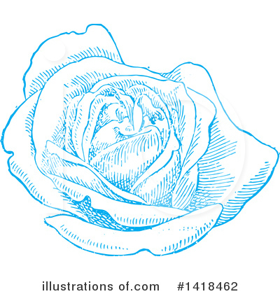 Roses Clipart #1418462 by BestVector