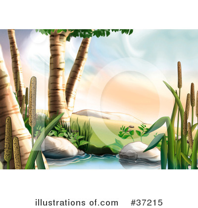 Cattail Clipart #37215 by dero