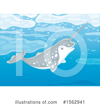 Narwhal Clipart #1562941 by Alex Bannykh