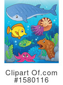 Sea Life Clipart #1580116 by visekart