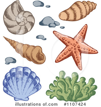 Sea Shell Clipart #1107424 by visekart