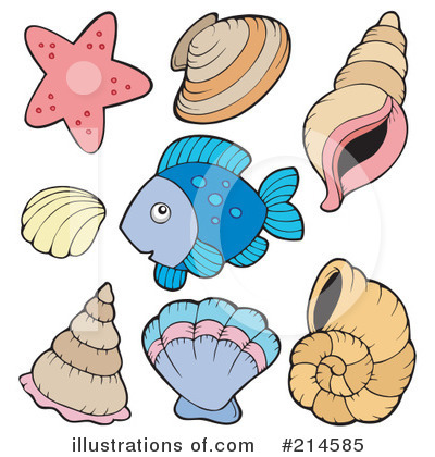 Sea Shells Clipart #214585 by visekart