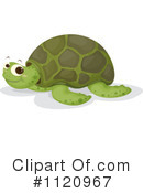 Royalty-Free (RF) sea turtle Clipart Illustration #1120967
