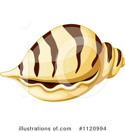 Seashell Clipart #1120994 by Graphics RF