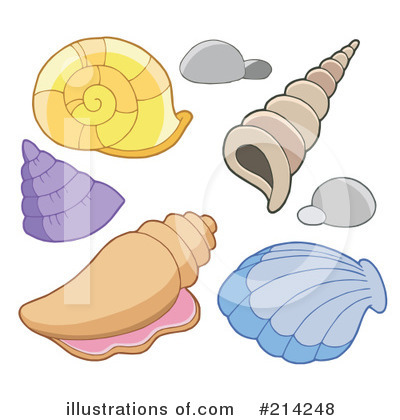 Sea Shells Clipart #214248 by visekart
