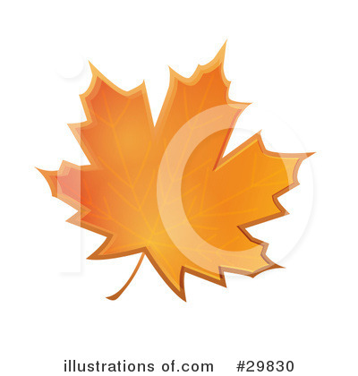 Autumn Leaf Clipart #29830 by Melisende Vector