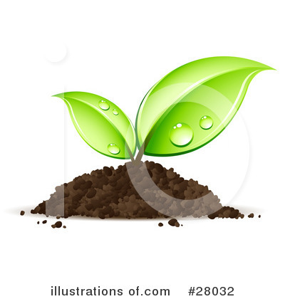 More Clip Art Illustrations of Seedling
