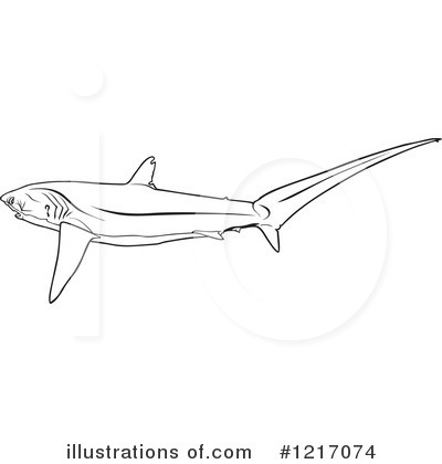 Thresher shark sketch coloring page for Thresher shark coloring page