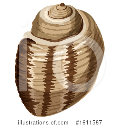Seashell Clipart #1611587 by Vector Tradition SM