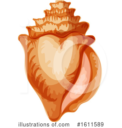 Seashell Clipart #1611589 by Vector Tradition SM