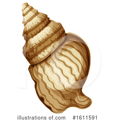 Seashell Clipart #1611591 by Vector Tradition SM