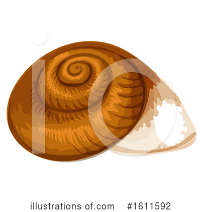 Seashell Clipart #1611592 by Vector Tradition SM