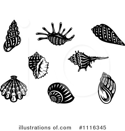 Scallop Clipart #1116345 by Vector Tradition SM