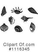 Shells Clipart #1116345 by Vector Tradition SM