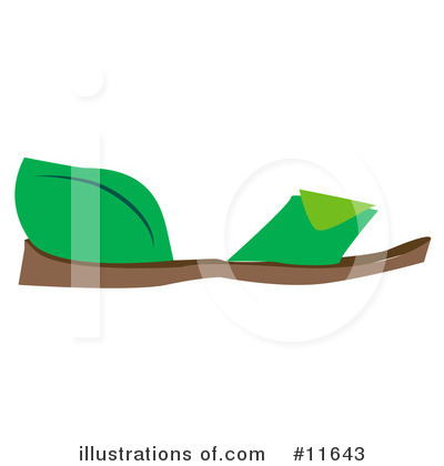 Shoe Clipart #11643 by AtStockIllustration