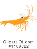 Shrimp Clipart #1189822 by Alex Bannykh