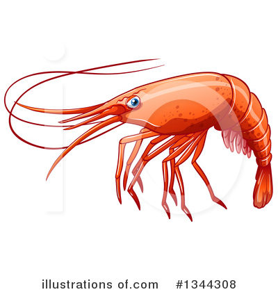 Shrimp Clipart #1344308 by Graphics RF