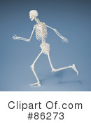 Skeleton Clipart #86273 by Mopic