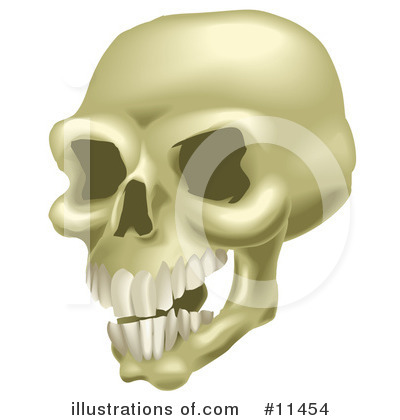 Skulls Clipart #11454 by AtStockIllustration